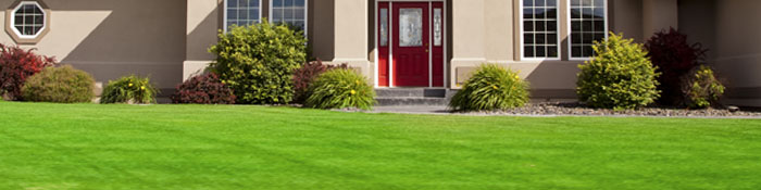 Photo Landscaping Services